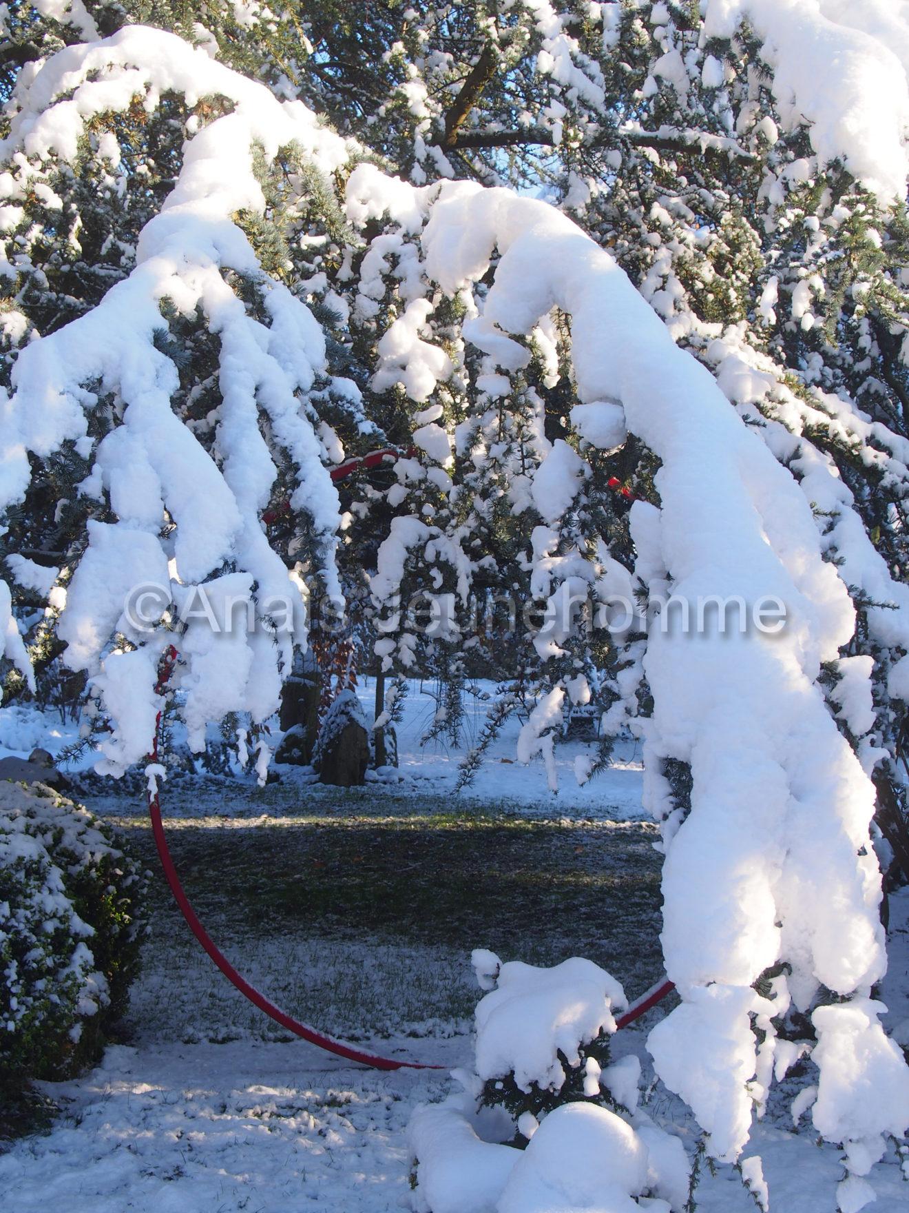 Embrassade neigeuse
