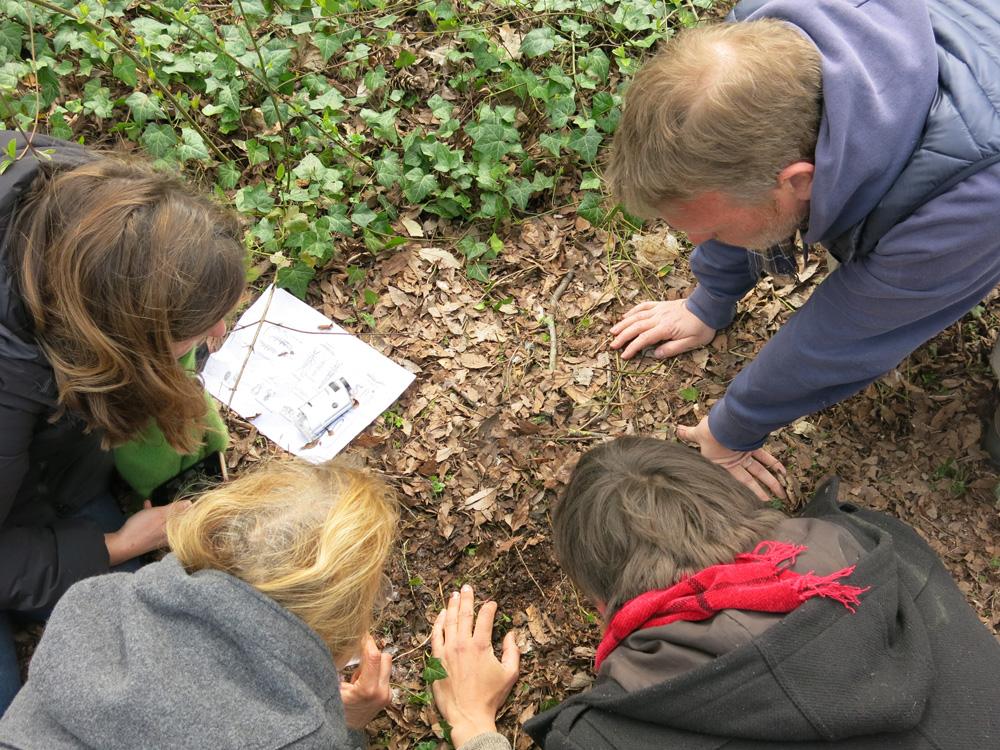 Observation de la faune du sol