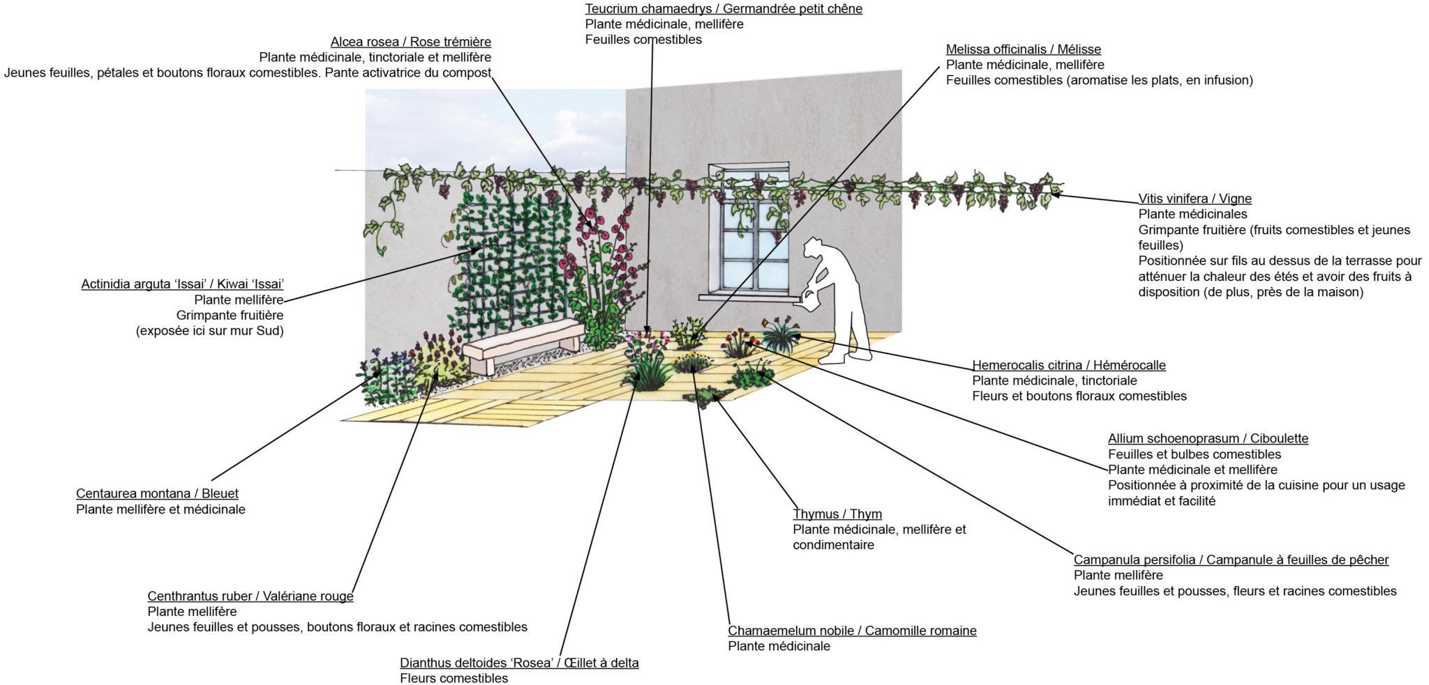 Plantes Pour Terrasse Sud Est un jardin comestible idéal pour garden_lab#07 - atelier l